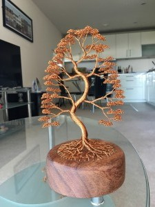 Tall Curved Bonsai Style Tree Attached To Wooden Base Via Roots